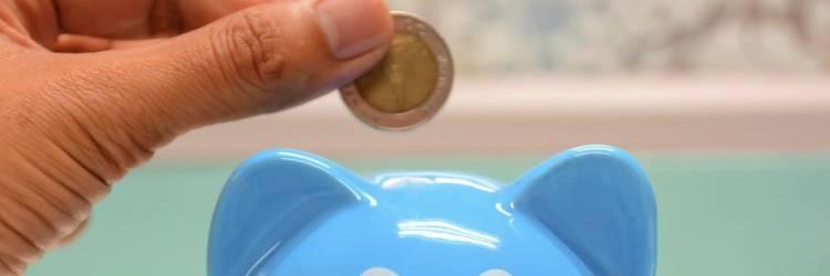 spaarpot, 2 euro munt